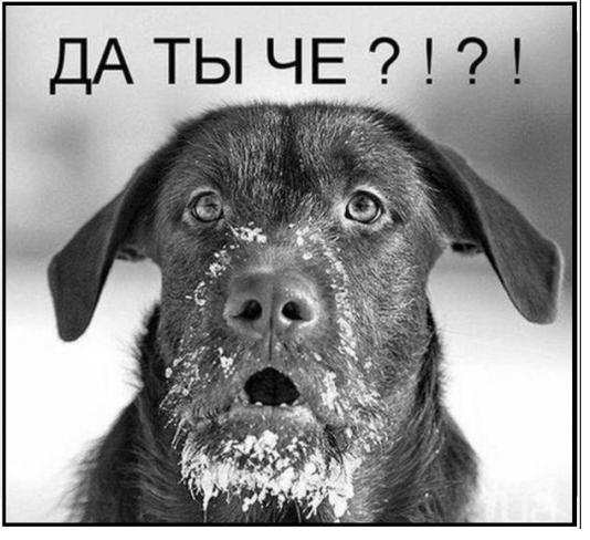 Post in новости форума